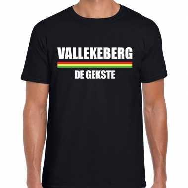 Carnaval vallekeberg de gekste t-shirt zwart voor heren